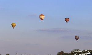 Ballonfiësta Barneveld - 28-8-2014