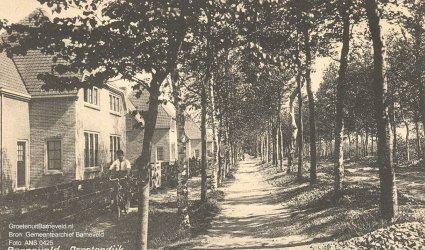 """Verleden 1925/1935 - """"Barneveld Drostendijk"""". De foto is gemaakt in de richting van Kootwijkerbroek."""